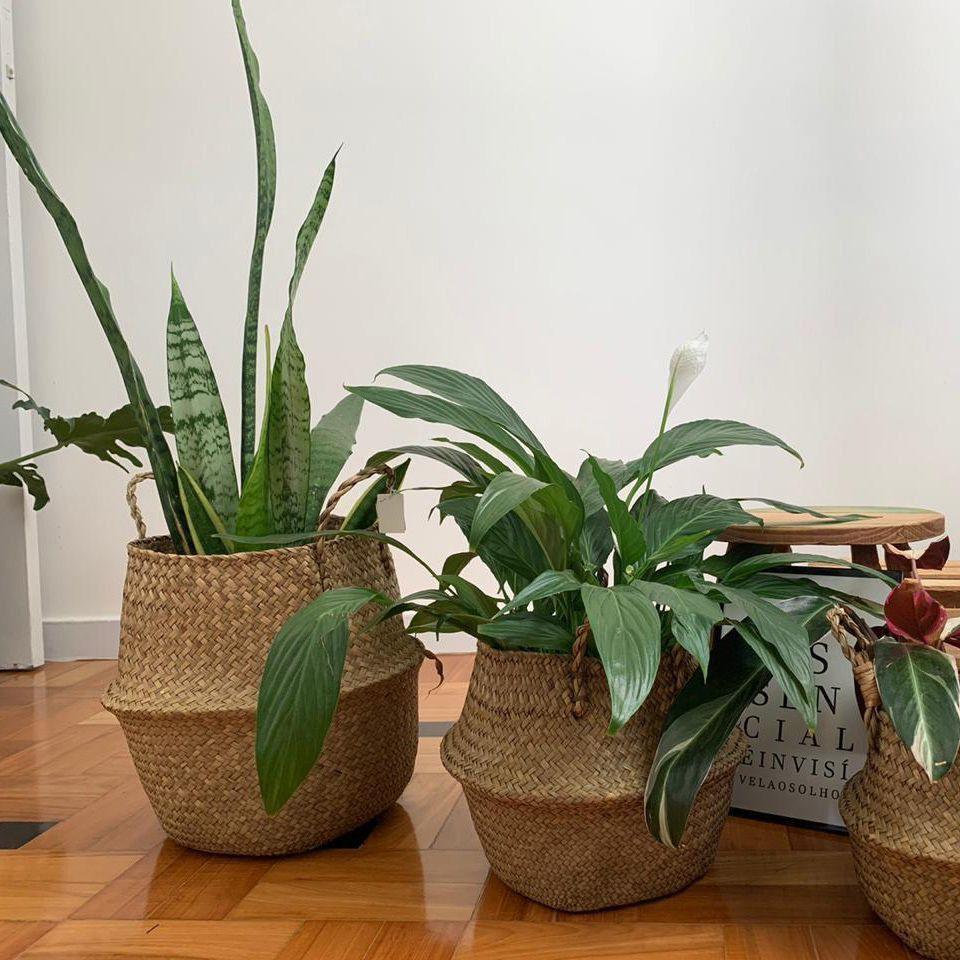 Vaso Enfeite Flor Jardim Casa Cesta Planta pote dobravel Palha Fibra Decoracao Pequeno