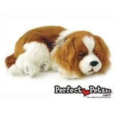 Cavalier King Cachorro de Pelúcia que Respira Filhote Perfect Petzzz