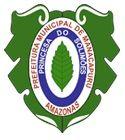 Apostila Prefeitura de Manacapuru AM 2018 - VIGILANTE