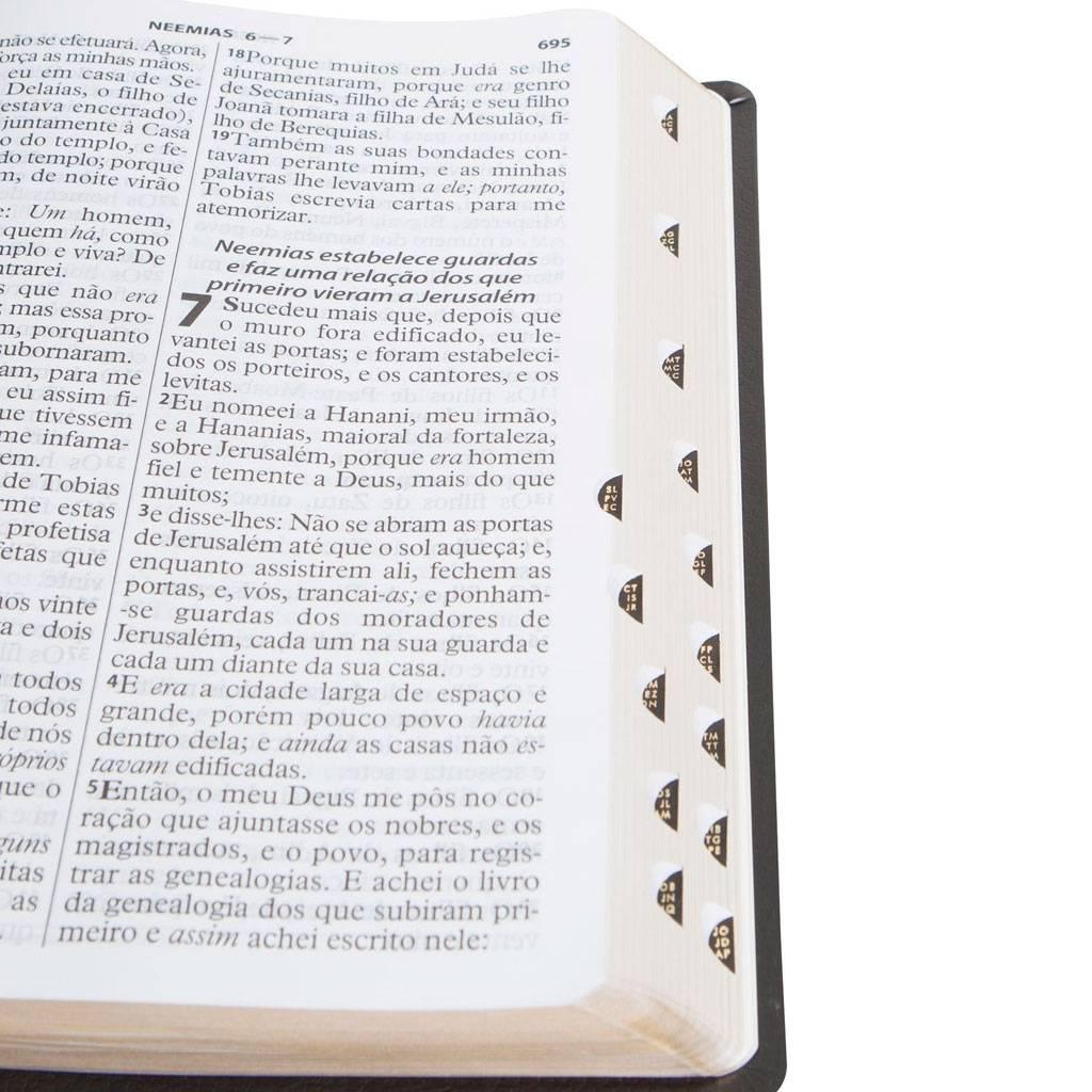 Bíblia Sagrada - Letra Extra Gigante - Almeira RC