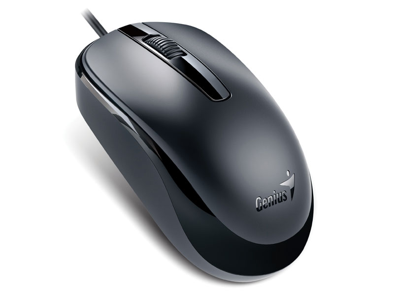 Mouse Usb Optico Genius Dx-120 Usb 1200Dpi Preto