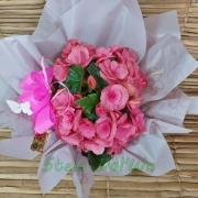 Begônia cor-de-rosa no cachepô 09470809