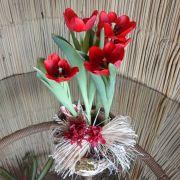 Tulipa vermelha no cachepô
