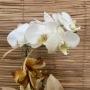 Orquídea Phalaenopsis 1H branca no cachepô 20050810