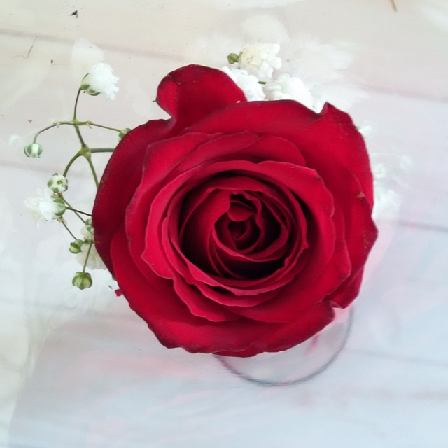 Buquê com 1 rosa