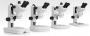 Estereomicroscópios binoculares ou trinoculares com ?zoom? disponíveis em aumentos de 50x, 75x, 100x, 150x e 200x com um ou dois tipos de iluminação diascópica (transmitida) ou episcópica (incidente)