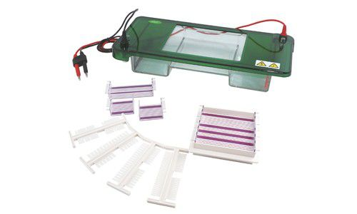 Cuba Para Eletroforese Horizontal 14cm, com 3 Bandejas Internas Removíveis 14x14cm, 14x7cm, 7x7cm - Modelo: DGH-14