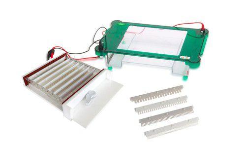 Cuba Para Eletroforese Horizontal 20cm, com Bandeja Interna Removível - Modelo: DGH-25