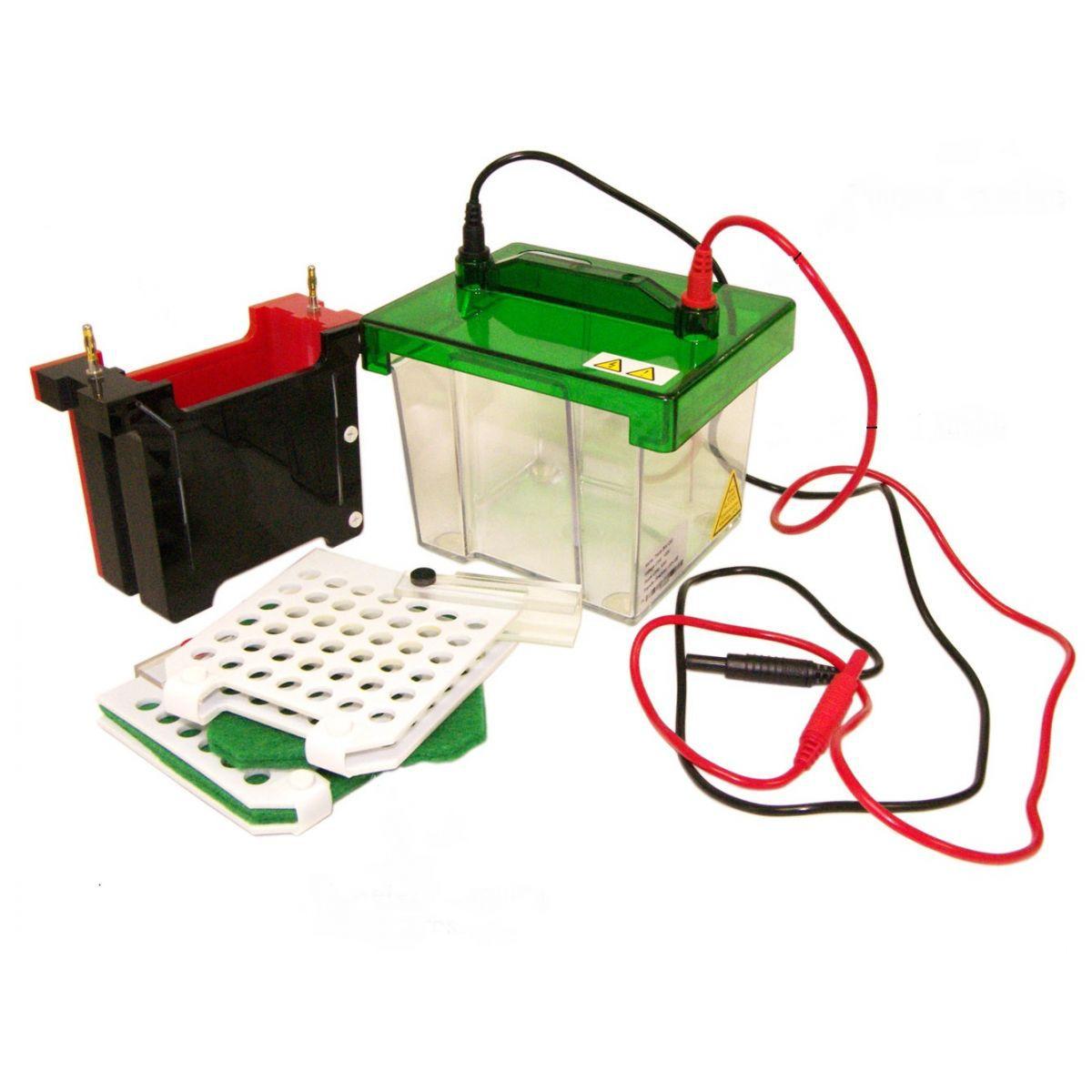 Eletroblotter 10cm x 10cm - Para 2 transferências (Sistema para Eletroblotting) - Modelo: DG-BLOT
