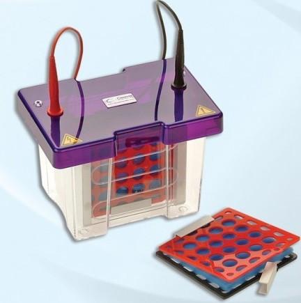 Eletroblotter 10cm x 10cm - Para ate 4 transferências, (Sistema para Eletroblotting) - Modelo: BLOT10