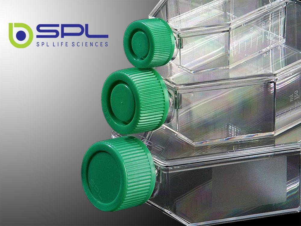 Frasco para cultura celular 250ml, com filtro, área de crescimento 75cm²