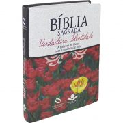 BIBLIA SAGRADA VERDADEIRA IDENTIDADE