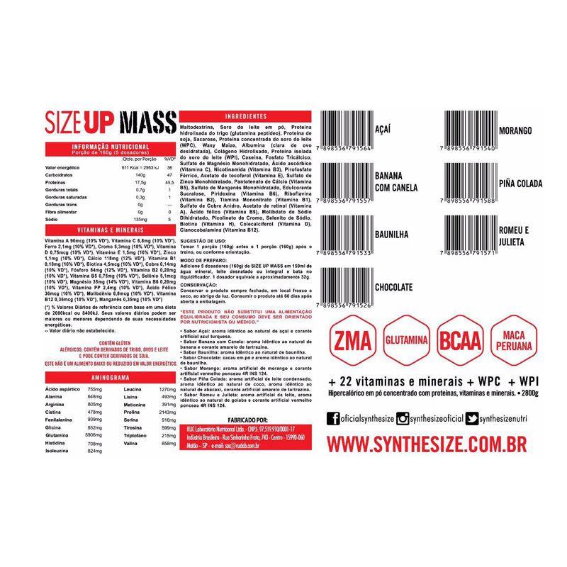 Size Up Mass 2,8kg - Synthesize