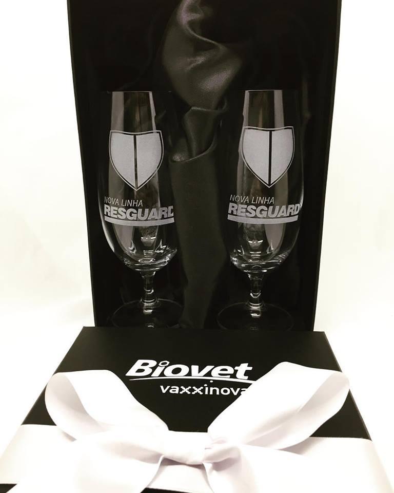 Conjunto luxo 2 taças de cristal para cerveja (BC2.57311DP)