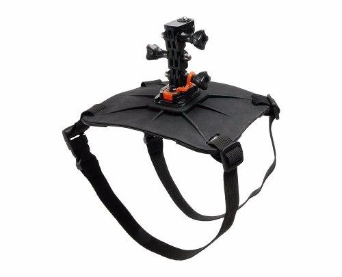 Fetch Vivitar Original (Cinturão Canino) Para GoPro E Câmeras De Ação - VIV-APM7812