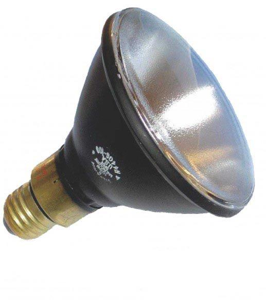 Cod.HS44 - Lâmpada PAR38 100W HS44GS  - lampadas.net