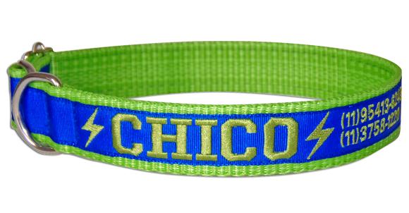 Coleira Identificação Cães - Raios Verdes - Verde/AzulRoyal/Verde  - PetPatuá | Coleiras de Identificação