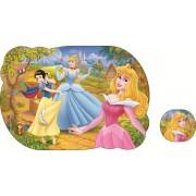Jogo Americano Princesas Disney