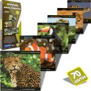 Quebra-cabeça Educativo Animais e seus Habitats Toyster