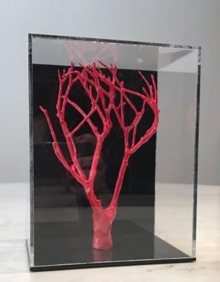Cris Campana - Jardim Suspenso vermelho