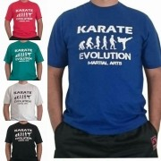 Camiseta Karate Evolution Basica cores