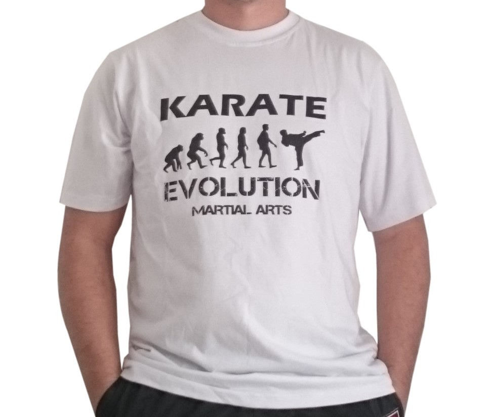 Camiseta Karate Evolution Basica cores