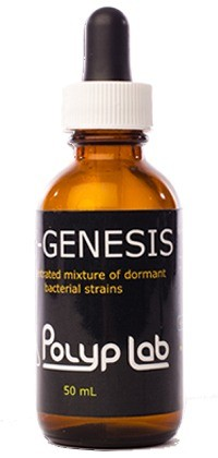 RF-GENESIS Polyp Lab  - Aquário Estilos