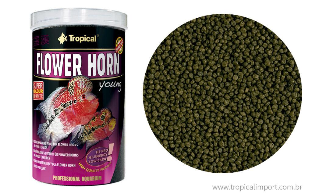 Tropical Flower Horn Young 95g  - Aquário Estilos