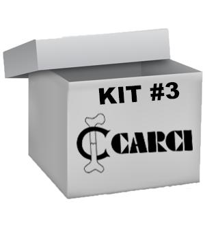 KIT #3 - Volta às aulas com a CARCI