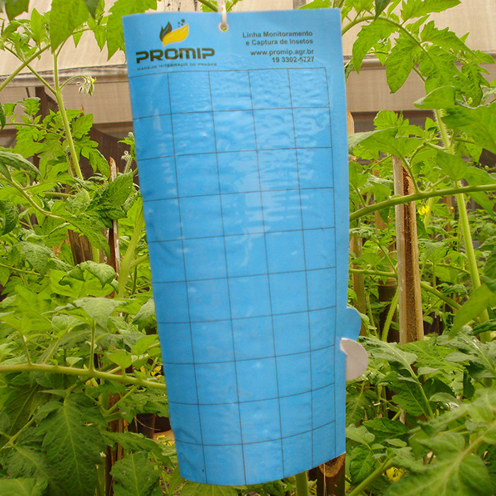 Armadilha Adesiva Azul para Captura de Insetos - 10 unidades