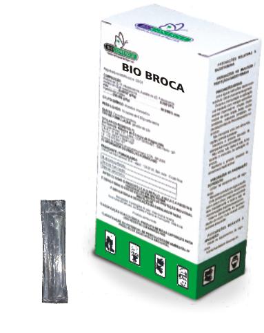 Bio Broca
