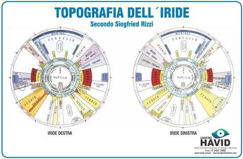 Mapa A3 Topografia Dell 'Iride - Segundo Siegfried Rizzi