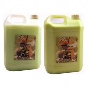 Shampoo e Condicionador Hidratante Aromas da Amazonia - 5 litos cada