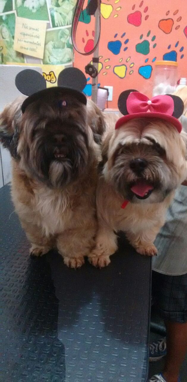 BONÉ MICKEY e MINNIE