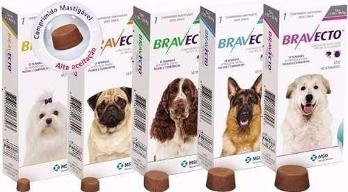 BRAVECTO- Antipulgas e Carrapatos MSD para Cães   - Shoppinho Animal