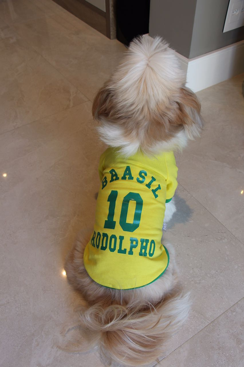 CAMISA DO BRASIL- COPA PERSONALIZADA  - Shoppinho Animal