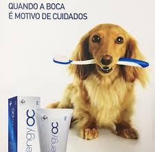 DEFENGY OC - 80G  - Shoppinho Animal