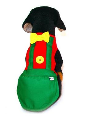 PALHAÇO (FANTASIA)  - Shoppinho Animal
