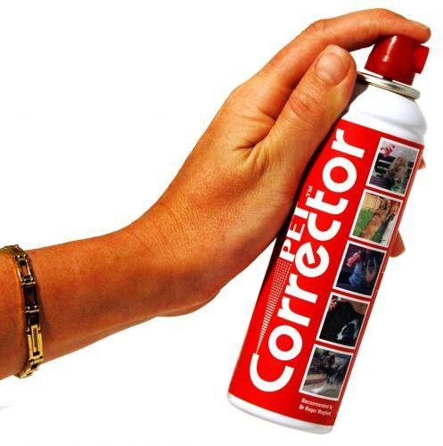 Spray Antilatido Jambo Pet Corrector