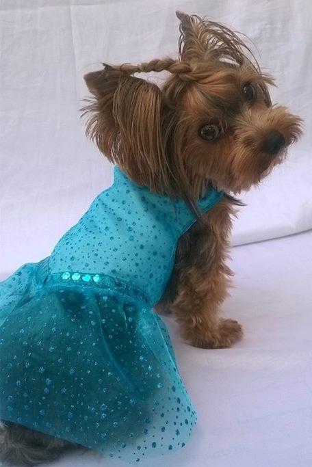VESTIDO ELSA -FROZEN (FANTASIA)  - Shoppinho Animal