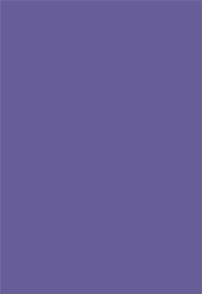 Papel Color Plus Amsterdam - roxo - 180g