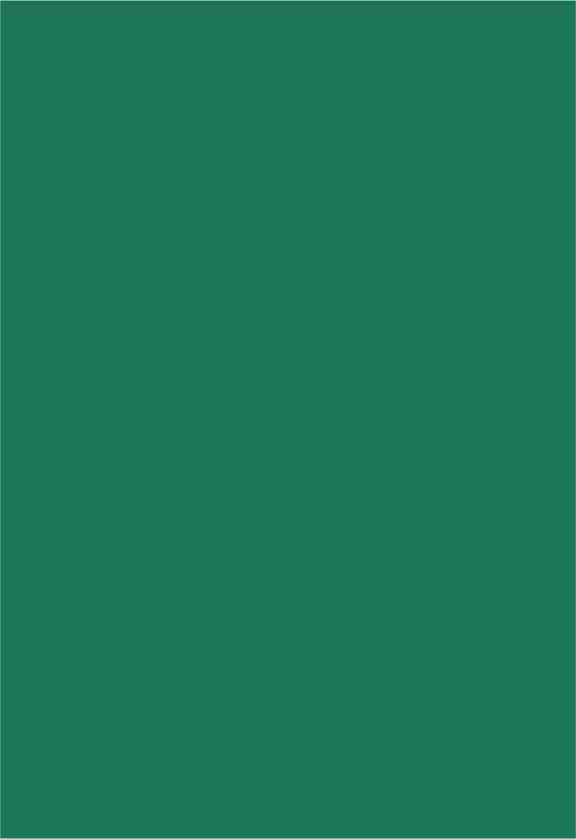 Papel Color Plus Brasil - verde bandeira - 120g