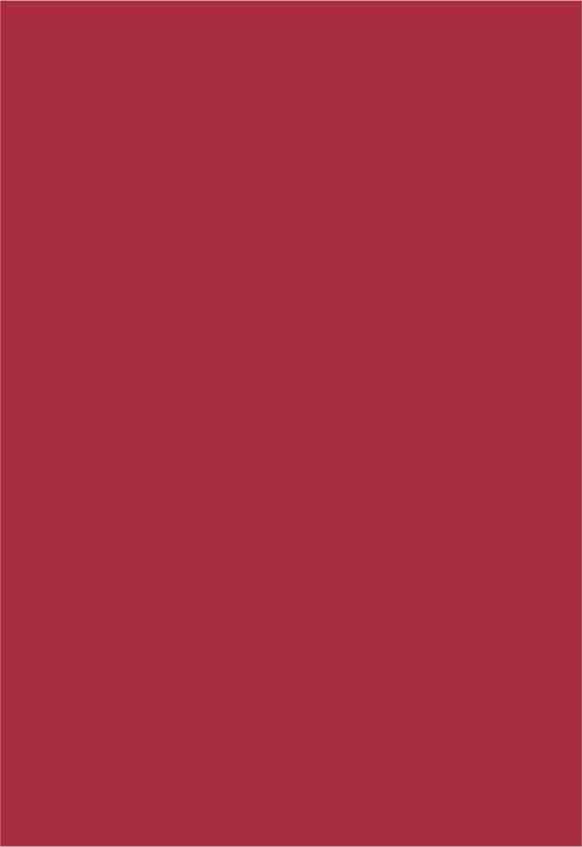 Papel Color Plus Pequim - vermelho escuro - 180g