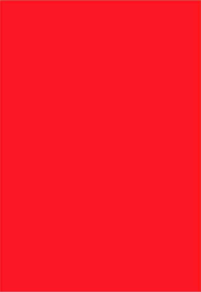 Papel Color Plus Tóquio - vermelho - 120g