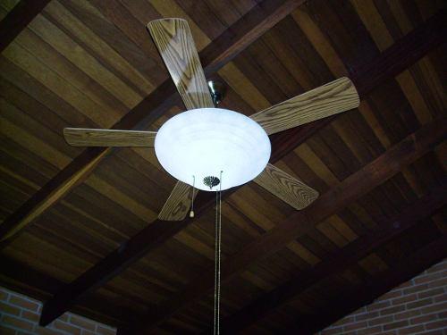 Ventilador de Teto 5 Pas - HL 24 -  Lustre Com Plafon De Vidro - 52 Pol
