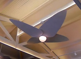 Ventilador De Teto Pás Em Fibra Natural Boeing G  3m