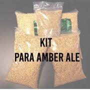KIT para produção de 20 litros de cerveja do estilo American Amber Ale