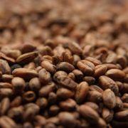 Malte Weyermann Carawheat - 500g