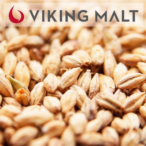 Viking Malte Munich Light - Saca - 25 kg