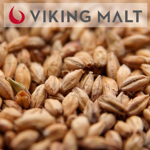 Viking Malte Pale Ale - Saca - 25 kg